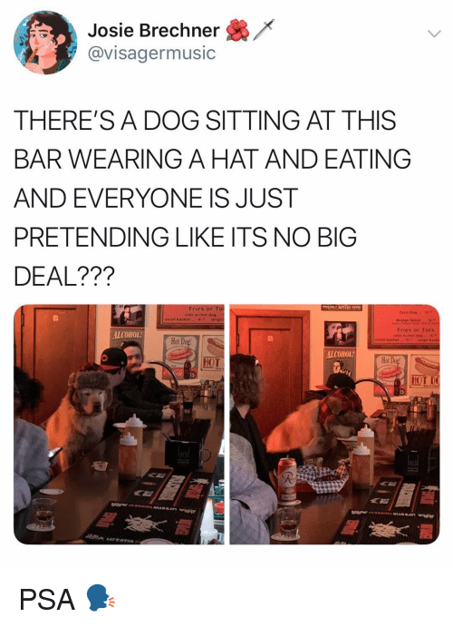 Memes, Alcohol, and 🤖: /<  Josie Brechner  @visagermusic  THERE'S A DOG SITTING AT THIS  BAR WEARING A HAT AND EATING  AND EVERYONE IS JUST  PRETENDING LIKE ITS NO BIG  DEAL???  Fries or To  de w/hot dog  Fries or Tots  ALCOHOL  Hot Dog  ALCOHOL  HOT  Hot  15  HOT PSA 🗣