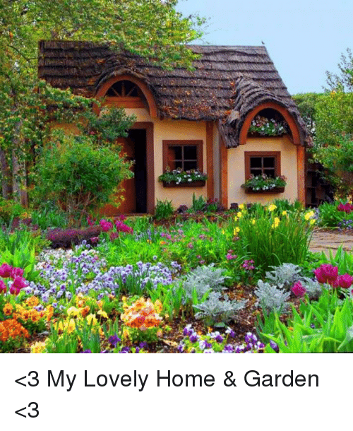 homey inspiration olive garden home delivery. Memes  Home and 3 My Lovely Garden 25 Best About Rose