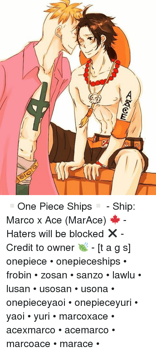 C ▫One Piece Ships▫ - Ship Marco X Ace MarAce 🍁 - Haters