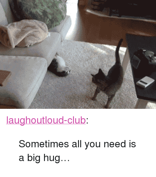 """Club, Tumblr, and Blog: <p><a href=""""http://laughoutloud-club.tumblr.com/post/156094261286/sometimes-all-you-need-is-a-big-hug"""" class=""""tumblr_blog"""">laughoutloud-club</a>:</p>  <blockquote><p>Sometimes all you need is a big hug…</p></blockquote>"""
