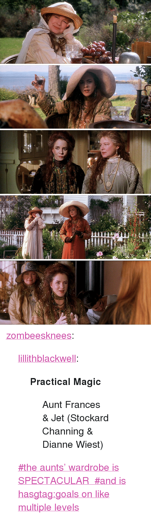 """Goals, Tumblr, and Blog: <p><a href=""""http://zombeesknees.tumblr.com/post/167634700095/lillithblackwell-practical-magic-aunt-frances"""" class=""""tumblr_blog"""">zombeesknees</a>:</p><blockquote> <p><a href=""""http://lillithblackwell.tumblr.com/post/97220094721/practical-magic-aunt-frances-jet-stockard"""" class=""""tumblr_blog"""">lillithblackwell</a>:</p> <blockquote> <p><strong>Practical Magic</strong></p> <blockquote> <p>Aunt Frances &amp; Jet (Stockard Channing &amp; Dianne Wiest)</p> </blockquote> </blockquote> <p style=""""""""><a href=""""https://www.tumblr.com/tagged/the-aunts%27-wardrobe-is-SPECTACULAR"""">#the aunts' wardrobe is SPECTACULAR</a><a href=""""https://www.tumblr.com/tagged/and-is-hasgtag%3Agoals-on-like-multiple-levels""""> #and is hasgtag:goals on like multiple levels</a><br/></p> </blockquote>"""