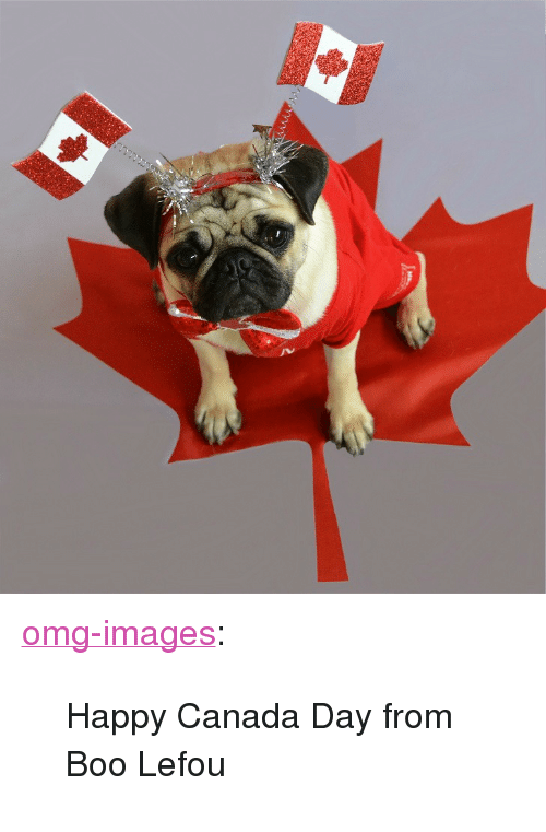 """Boo, Omg, and Tumblr: <p><a href=""""https://omg-images.tumblr.com/post/162475191332/happy-canada-day-from-boo-lefou"""" class=""""tumblr_blog"""">omg-images</a>:</p>  <blockquote><p>Happy Canada Day from Boo Lefou</p></blockquote>"""