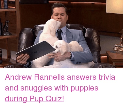 """Puppies, Target, and youtube.com: <p><a href=""""https://www.youtube.com/watch?v=O5oWbIu5P_Q&amp;t=108s"""" target=""""_blank"""">Andrew Rannells answers trivia and snuggles with puppies during Pup Quiz!</a><br/></p>"""