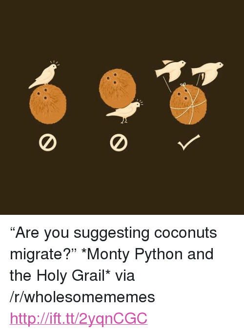 "Http, Holy Grail, and Monty Python and the Holy Grail: <p>&ldquo;Are you suggesting coconuts migrate?&rdquo; *Monty Python and the Holy Grail* via /r/wholesomememes <a href=""http://ift.tt/2yqnCGC"">http://ift.tt/2yqnCGC</a></p>"