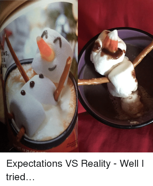 Reality, Well, and Tried: <p>Expectations VS Reality - Well I tried&hellip;</p>