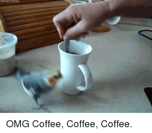Omg, Coffee, and Coffee Coffee Coffee: <p>OMG Coffee, Coffee, Coffee.</p>