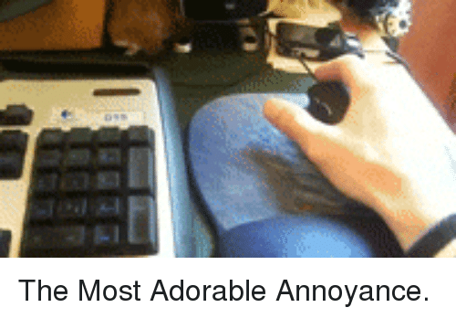 Adorable, Annoyance, and The: <p>The Most Adorable Annoyance.</p>