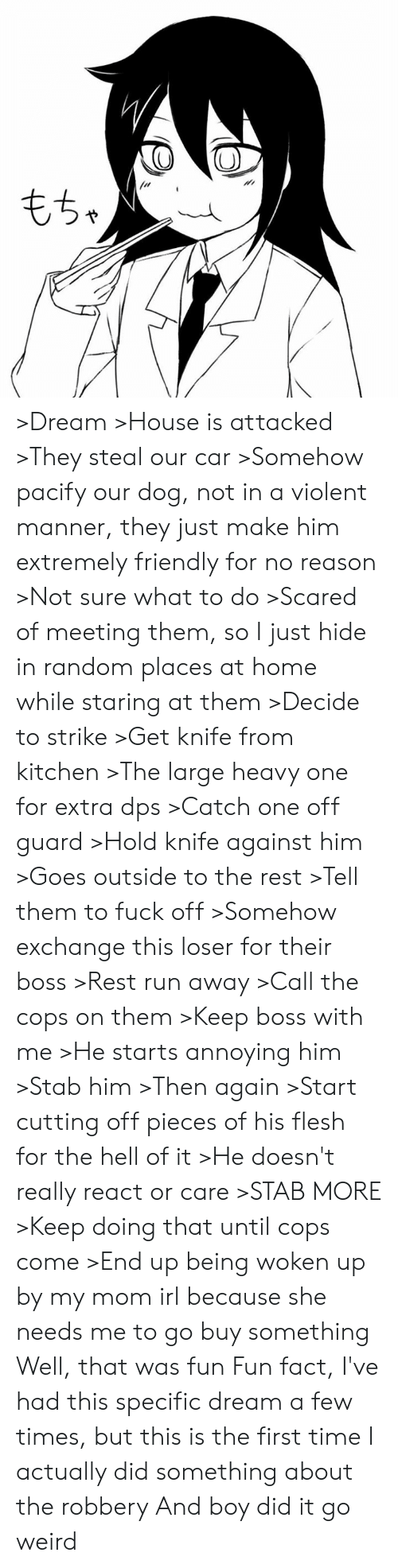 Dank, Run, and Weird: >Dream >House is attacked >They steal our car >Somehow pacify our dog, not in a violent manner, they just make him extremely friendly for no reason >Not sure what to do >Scared of meeting them, so I just hide in random places at home while staring at them >Decide to strike >Get knife from kitchen >The large heavy one for extra dps >Catch one off guard >Hold knife against him >Goes outside to the rest >Tell them to fuck off >Somehow exchange this loser for their boss >Rest run away >Call the cops on them >Keep boss with me >He starts annoying him >Stab him >Then again >Start cutting off pieces of his flesh for the hell of it >He doesn't really react or care >STAB MORE >Keep doing that until cops come >End up being woken up by my mom irl because she needs me to go buy something  Well, that was fun  Fun fact, I've had this specific dream a few times, but this is the first time I actually did something about the robbery  And boy did it go weird