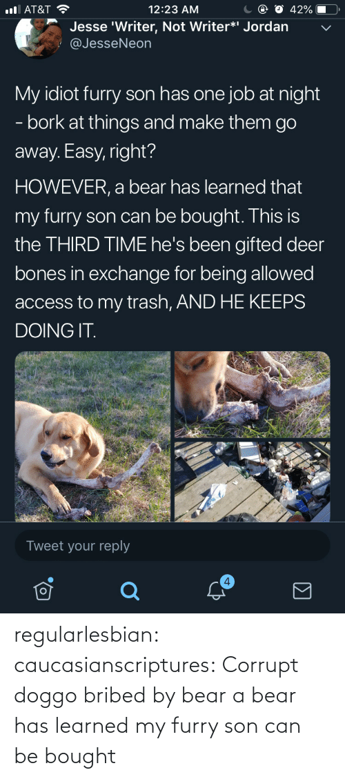 Bones, Deer, and Trash: С @ О 42%-O,  12:23 AM  l AT&T  Jesse 'Writer, Not Writer*i Jordan  @JesseNeon  My idiot furry son has one job at night  - bork at things and make them go  away. Easy, right?  HOWEVER, a bear has learned that  my furry son can be bought. This is  the THIRD TIME he's been gifted deer  bones in exchange for being allowed  access to my trash, AND HE KEEPS  DOING IT  Tweet your reply  4 regularlesbian:  caucasianscriptures: Corrupt doggo bribed by bear a bear has learned my furry son can be bought