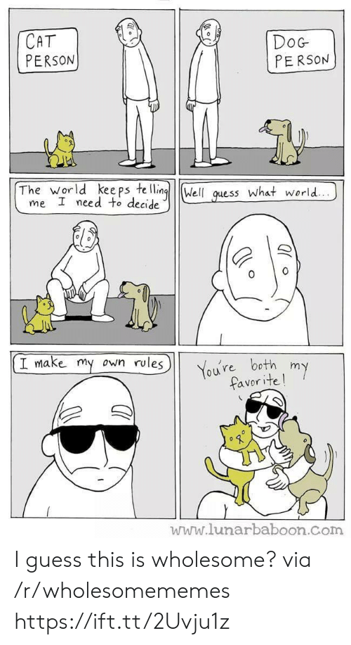 Guess, World, and Wholesome: СAT  PERSON  DoG  PERSON  The world kee ps te lling  me I need to decide  Well  what world...  guess  I make my own rules  You're both  favor ite!  my  www.lunarbaboon.com I guess this is wholesome? via /r/wholesomememes https://ift.tt/2Uvju1z