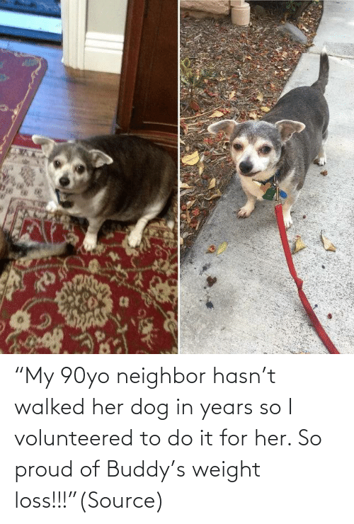 """Aww, Reddit, and Target: """"My 90yo neighbor hasn't walked her dog in years so I volunteered to do it for her. So proud of Buddy's weight loss!!!""""(Source)"""