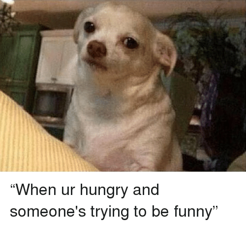 %E2%80%9Cwhen ur hungry and someones trying to be funny%E2%80%9D 11133488 when ur hungry and someone's trying to be funny\u201d hungry meme on me me