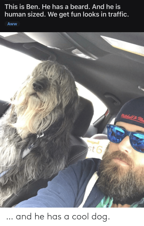 Cool, Dog, and Cool Dog: … and he has a cool dog.