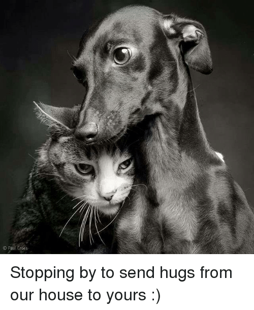 https://pics.me.me/%E2%93%92-paulcroes-stopping-by-to-send-hugs-from-our-house-6895040.png