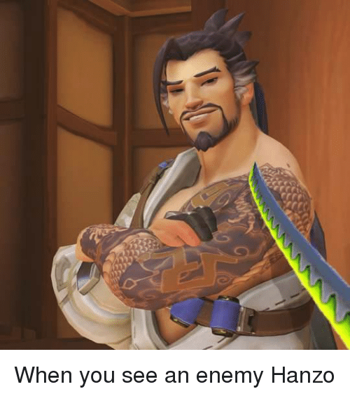 Dank, Enemies, and 🤖: 」」レ When you see an enemy Hanzo