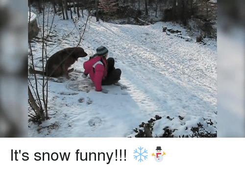 Funny Memes For Snow : ✅ best memes about snow funny snow funny memes