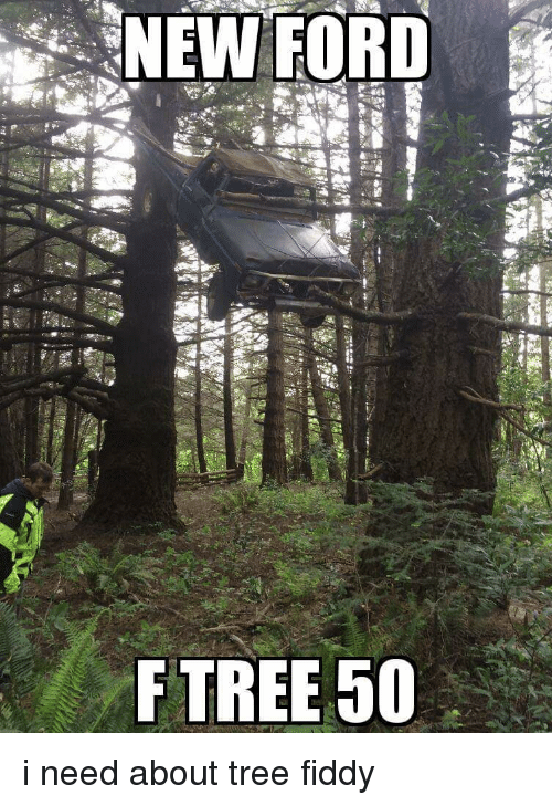 Funny, Ford, and Tree: ー:SNEW FORD  HE  F TREE 50  ster imamon i need about tree fiddy