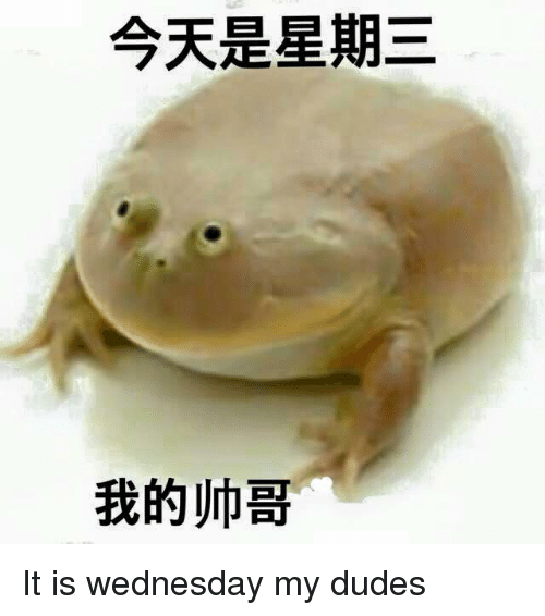 Dude, Wednesday, and Avant Garde Chinese: 今天是星期三  我的帅哥 It is wednesday my dudes