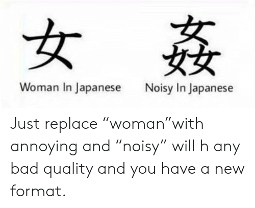 Å¥³å§¦ Å¥³å¥³ Woman In Japanese Noisy In Japanese Just Replace Woman With Annoying And Noisy Will H Any Bad Quality And You Have A New Format Bad Meme On Me Me