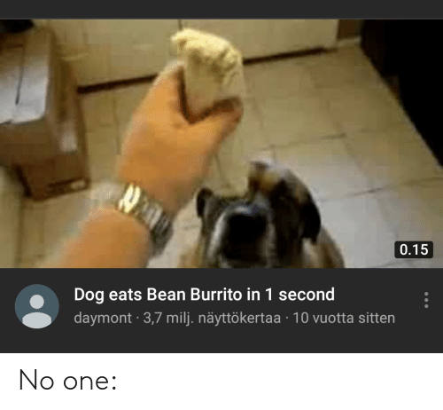 015 Dog Eats Bean Burrito In 1 Second Daymont 37 Milj Nayttokertaa 10 Vuotta Sitten No One Reddit Meme On Me Me