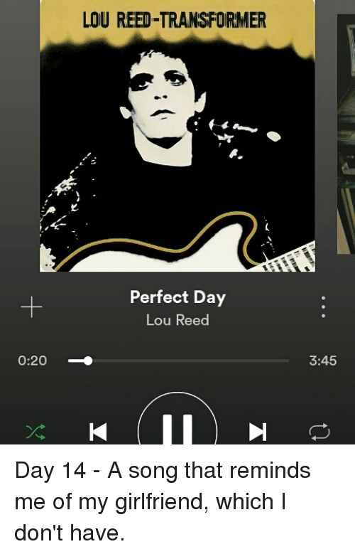 020 LOU REED TRANSFORMER Perfect Day Lou Reed 345 Day 14 - A