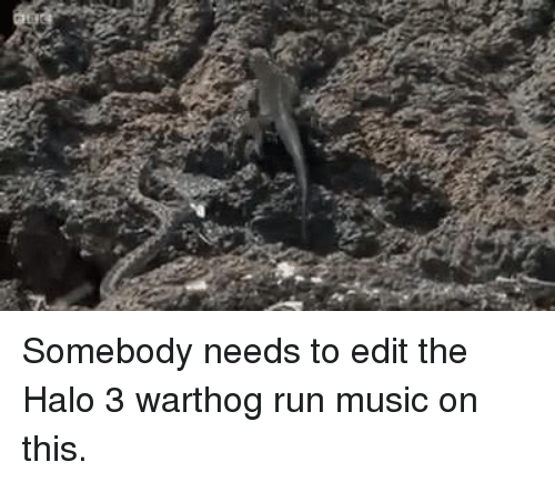 0 Somebody Needs to Edit the Halo 3 Warthog Run Music on This | Halo