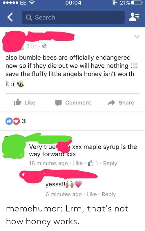 True, Tumblr, and Xxx: 00:04  21%  Q Search  1 hr  also bumble bees are officially endangered  now so if they die out we will have nothing!!!  save the fluffy little angels honey isn't worth  it:  i Like  Share  Comment  Very true maple syrup is the  way forwara XXX  18 minutes ago Like 1 Reply  yesss!!i  6 minutes ago Like Reply memehumor:  Erm, that's not how honey works.