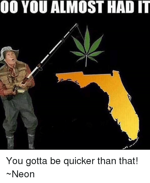 Memes, 🤖, and You Gotta: 00 YOU ALMOST HAD IT You gotta be quicker than that!  ~Neon
