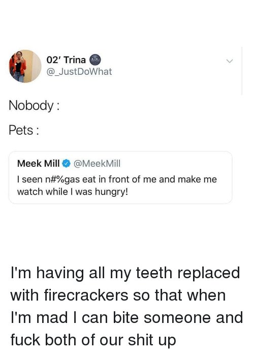 Hungry, Meek Mill, and Shit: 02' Trina  @_JustDoWhat  Nobody:  Pets:  Meek Mill@MeekMill  I seen n#%gas eat in front of me and make me  watch while I was hungry! I'm having all my teeth replaced with firecrackers so that when I'm mad I can bite someone and fuck both of our shit up