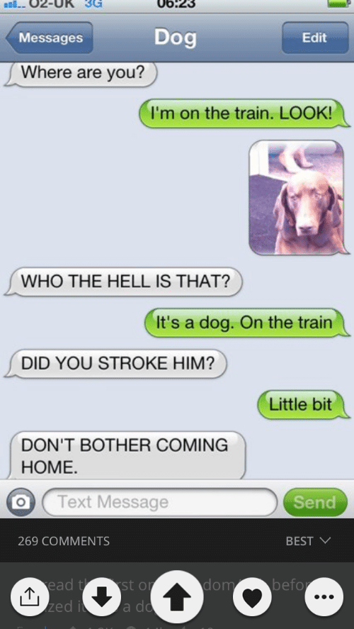 Best, Text, and Train: 06:23  Dog  Edit  Messages  Where are you?  I'm on the train. LOOK!  WHO THE HELL IS THAT?  It's a dog. On the train  DID YOU STROKE HIM?  Little bit  DON'T BOTHER COMING  НОМЕ.  Text Message  Send  269 COMMENTS  BEST  befo  ead t st or  zed i  dom  a do