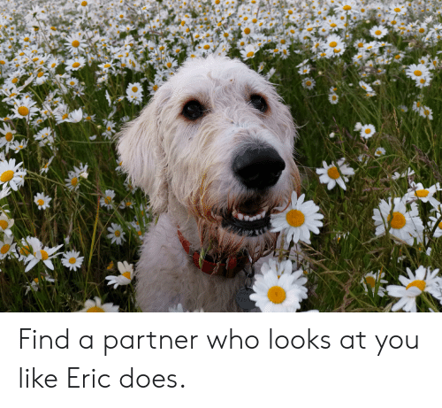 Who, You, and Like: 078  7263 Find a partner who looks at you like Eric does.