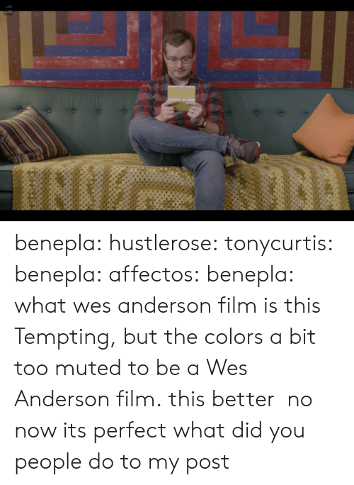 Target, Tumblr, and Blog: 1.00 benepla: hustlerose:  tonycurtis:  benepla:  affectos:  benepla: what wes anderson film is this Tempting, but the colors a bit too muted to be a Wes Anderson film.  this better  no now its perfect   what did you people do to my post