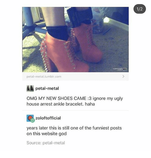God, Ironic, and Omg: 1/2  career  petal-metal.tumblr.com  petal-metal  OMG MY NEW SHOES CAME :3 ignore my ugly  house arrest ankle bracelet. haha  zoloftofficial  years later this is still one of the funniest posts  on this website god  Source: petal-metal