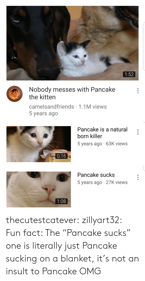 """Omg, Target, and Tumblr: 1:52  Nobody messes with Pancake  the kitten  camelsandfriends 1.1M views  5 years ago   Pancake is a natural  born killer  5 years ago 63K views  0:16   Pancake sucks  5 years ago 27K views  1:08 thecutestcatever:  zillyart32:  Fun fact: The """"Pancake sucks"""" one is literally just Pancake sucking on a blanket, it's not an insult to Pancake  OMG"""