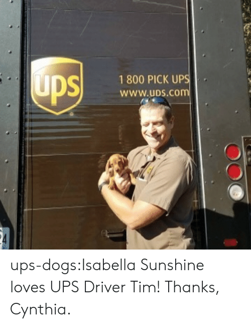 Dogs, Target, and Tumblr: 1 800 PICK UP  WWw.uDS.CO ups-dogs:Isabella Sunshine loves UPS Driver Tim! Thanks, Cynthia.