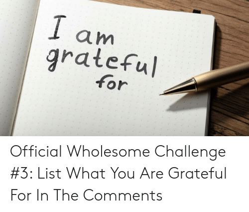 Wholesome, List, and Challenge: 1 am  grateful  for Official Wholesome Challenge #3: List What You Are Grateful For In The Comments
