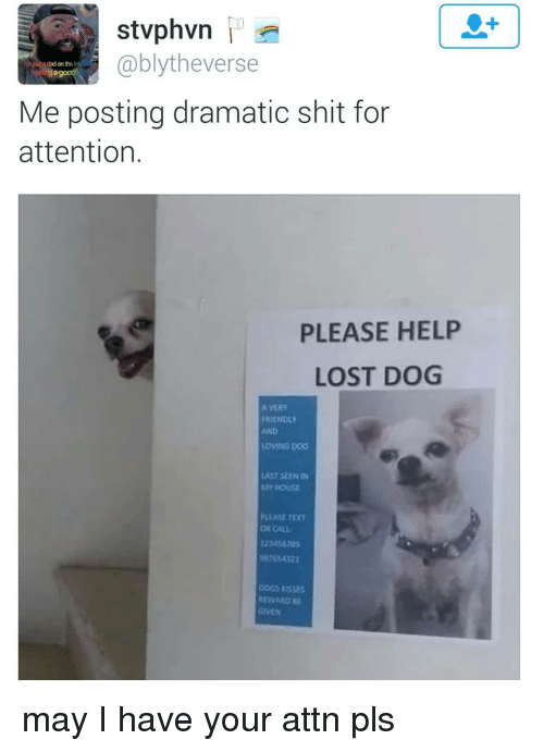 Dad, Memes, and Shit: 1  @blytheverse  a dad on the i  Me posting dramatic shit for  attention.  PLEASE HELP  LOST DOG  A VERY  FRIENDLY  AND  LOVING DOG  LAST SEEN IN  Y HOUSE  PLEASE TEXT  OR CALL  123456785  87654321  OGS RSSEs  REWARD B may I have your attn pls