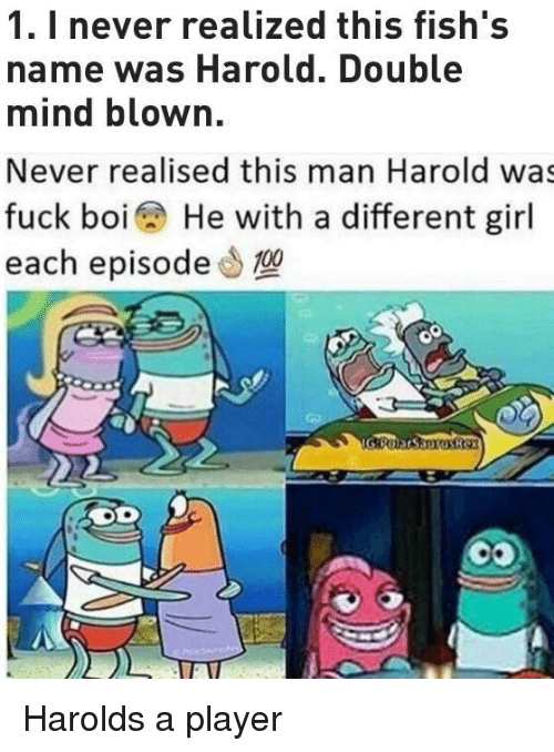 Fuck, Girl, and Mind: 1. I never realized this fish's  name was Harold. Double  mind blown.  Never realised this man Harold was  fuck boi He with a different girl  each episode0 Harolds a player