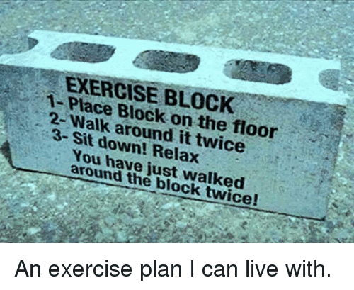 Memes, Exercise, and Live: 1- lace Block on the floor  3- Sit around it twice  down! Relax  You around just walked  the block twice! An exercise plan I can live with.