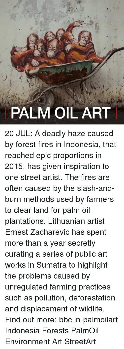 Memes, Indonesia, and Slash: 1.  PALM OIL ART 20 JUL: A deadly haze caused by forest fires in Indonesia, that reached epic proportions in 2015, has given inspiration to one street artist. The fires are often caused by the slash-and-burn methods used by farmers to clear land for palm oil plantations. Lithuanian artist Ernest Zacharevic has spent more than a year secretly curating a series of public art works in Sumatra to highlight the problems caused by unregulated farming practices such as pollution, deforestation and displacement of wildlife. Find out more: bbc.in-palmoilart Indonesia Forests PalmOil Environment Art StreetArt