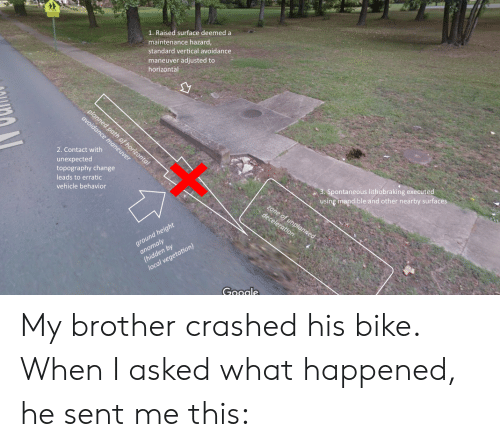 Change, Bike, and Brother: 1. Raised surface deemed a  maintenance hazard  standard vertical avoidance  maneuver adjusted to  horizontal  2. Contact with  unexpected  topography change  leads to erratic  vehicle behavior  pontaneous lithobraking executed  using mandible and other nearby surfaces  by  Gagale My brother crashed his bike. When I asked what happened, he sent me this: