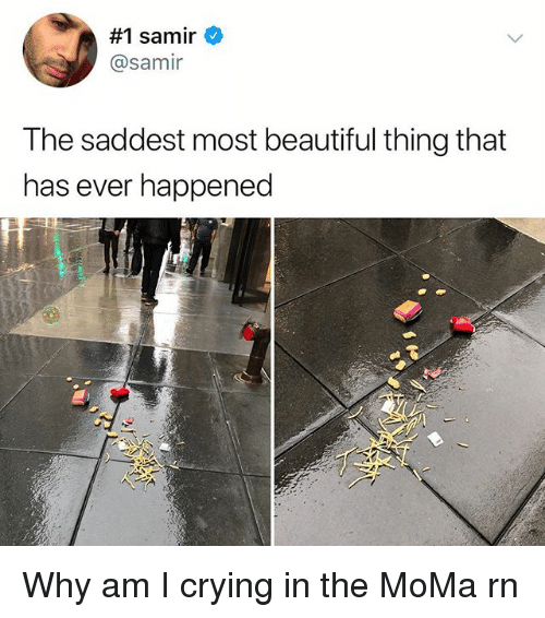 Beautiful, Crying, and Memes:  #1 samir  @samir  I he saddest most beautiful thing that  has ever happened Why am I crying in the MoMa rn