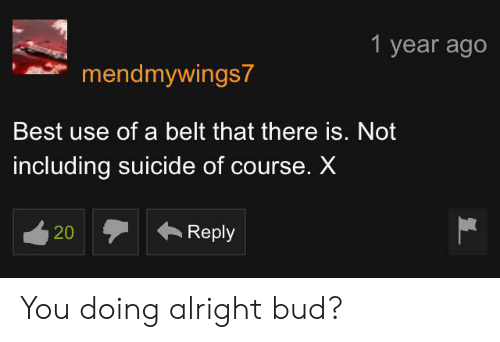 Best, Suicide, and Alright: 1 year ago  mendmywings7  Best use of a belt that there is. Not  including suicide of course. X  Reply  20 You doing alright bud?