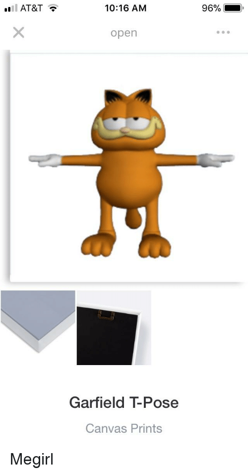 1016 Anm 96 Open Garfield T Pose Canvas Prints Canvas Meme On Me Me