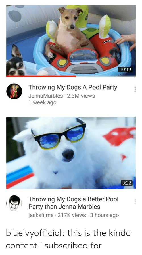 Dogs, Party, and Target: 10:19  Throwing My Dogs A Pool Party  JennaMarbles 2.3M views  1 week ago   3:02  Throwing My Dogs a Better Pool  Party than Jenna Marbles  jacksfilms 217K views 3 hours ago bluelvyofficial:  this is the kinda content i subscribed for