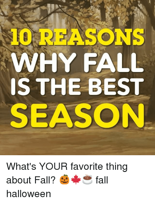 Fall, Halloween, and Memes: 10 REASONS  WHY FALL  IS THE BEST  SEASON What's YOUR favorite thing about Fall? 🎃🍁☕️ fall halloween