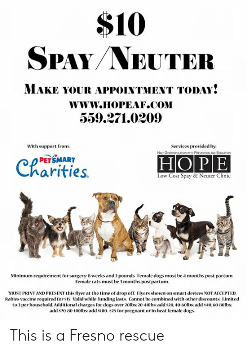 10 Spayneuter Make Your Appointment Today Wwwhopeafcom 5592710209