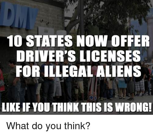 Memes, Aliens, and Alien: 10 STATES NOW OFFER  DRIVER'S LICENSES  FOR ILLEGAL ALIENS  LIKE IF YOU THINKTHIS IS WRONG! What do you think?