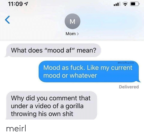 "Af, Mood, and Shit: 11:09  Mom>  What does ""mood af"" mean?  @heckoffsupreme  Mood as fuck. Like my current  mood or whatever  Delivered  Why did you comment that  under a video of a gorilla  throwing his own shit  M meirl"
