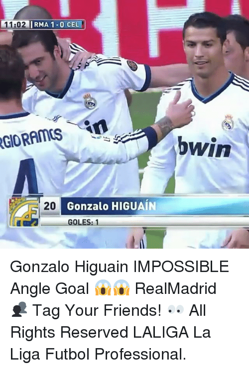 Friends, Goals, and Memes: 11  1:02  IRMA 1.0 CEL  20  Gonzalo HIGUAIN  GOLES Gonzalo Higuain IMPOSSIBLE Angle Goal 😱😱 RealMadrid 👥 Tag Your Friends! 👀 All Rights Reserved LALIGA La Liga Futbol Professional.